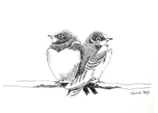 2 jonge zwaluwen